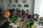 Projekt Sztuka Natury